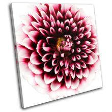 Abstract Flower Floral - 13-1329(00B)-SG11-LO